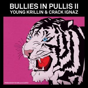 Bullies in Pullis 2